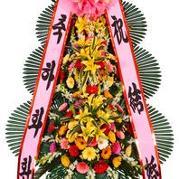 축하3단 기본형A