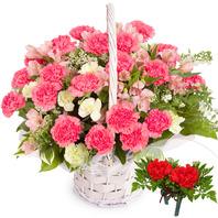 스프레이카네이션바구니+코사지2개(꽃행복338호)