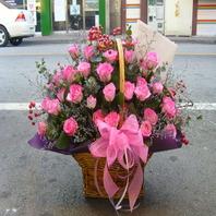 핑크빛사랑