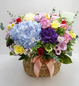 수국혼합장미꽃바구니